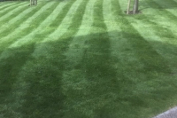 Cheshire lawn following Lawnsavers treatment